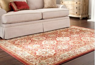 Stain-Resistant & Reversible Rugs
