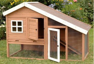 Buy Chicken Coops & Gardening Gear!