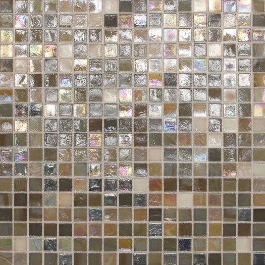 "Daltile City Lights 1/2"" x 1/2"" Mosaic Blend Field Tile in Barcelona"