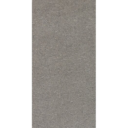 """Daltile Magma 12"""" x 24"""" Light Polished Field Tile in Flat Element"""