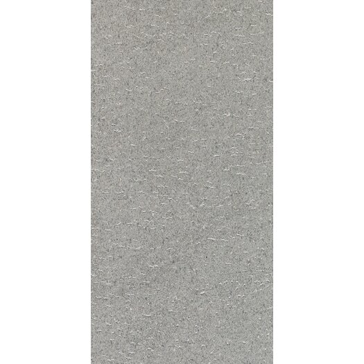 "Daltile Magma 18"" x 36"" Light Polished Field Tile in Flat Ash"
