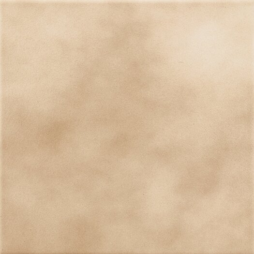 "Daltile Sierra 8"" x 8"" Field Plain Ceramic Tile in Aspen"