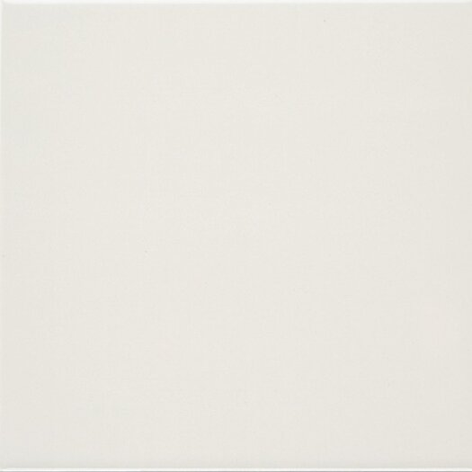 "Daltile Polaris 8"" x 8"" Glazed Field Tile in Gloss Almond"