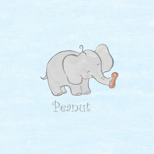 The Little Acorn Peanut Canvas Art