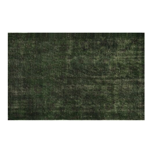 Moe's Home Collection Puzzle Green Area Rug