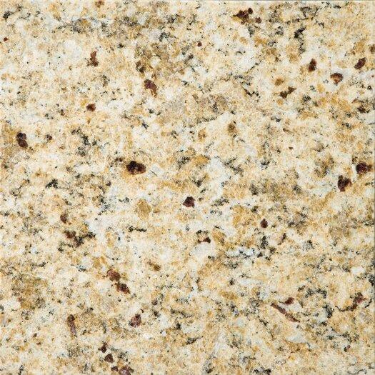 "Emser Tile Natural Stone 12"" x 12"" Granite Tile in Venetian Gold"