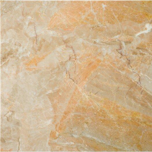 "Emser Tile Natural Stone 12"" x 12"" Marble Tile in Breccia Oniciata"