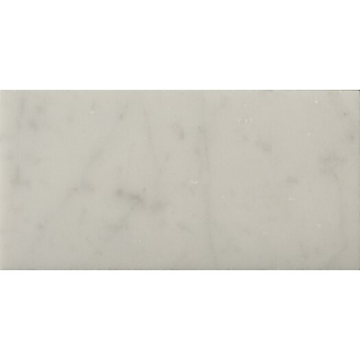 """Emser Tile Natural Stone 3"""" x 6"""" Honed Marble Field Tile in Bianco Gioia"""