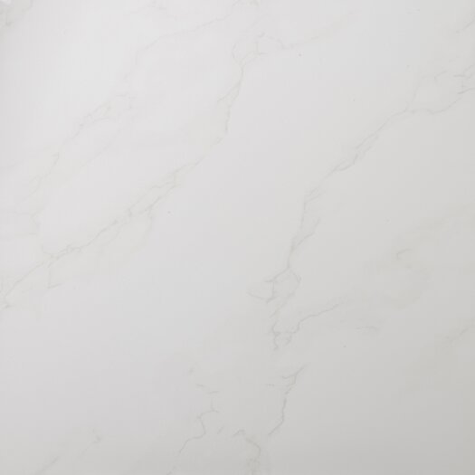 "Emser Tile Paladino 24"" x 24"" Unglazed Porcelain Floor Tile in Albanella"