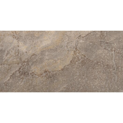 "Emser Tile Bombay 12"" x 24"" Glazed Porcelain Tile in Modasa"