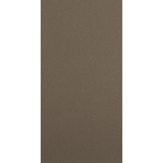 "Emser Tile Direction 24"" x 12"" Unglazed Polished Porcelain Tile in Proportion"