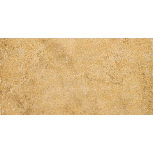 "Emser Tile Genoa 12"" x 24"" Glazed Porcelain Tile in Luca"