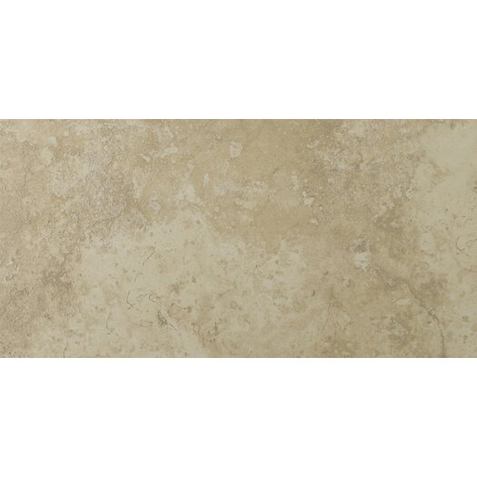 "Emser Tile Lucerne 12"" x 24"" Glazed Porcelain Tile in Alpi"