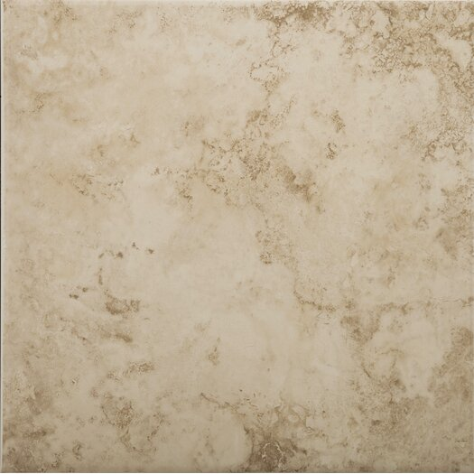 "Emser Tile Rainier 19"" x 19"" Glazed Ceramic Tile in Muir"