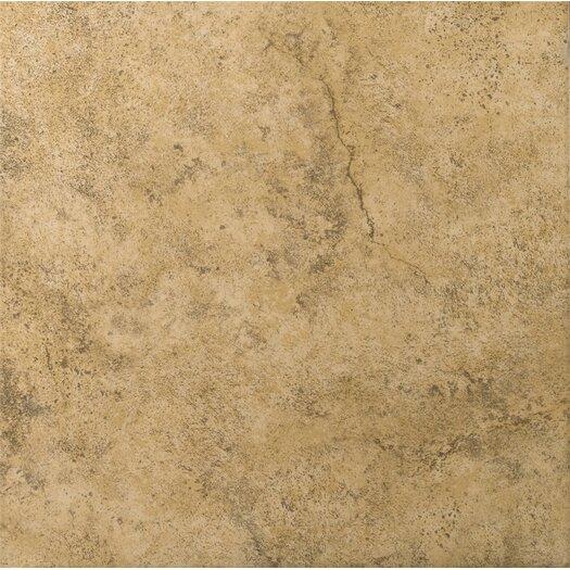 """Emser Tile Toledo 17"""" x 17"""" Glazed Ceramic Tile in Bruno"""