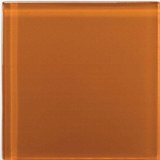 "Emser Tile Lucente 4"" x 4"" Glossy Field Tile in Cinnamon"