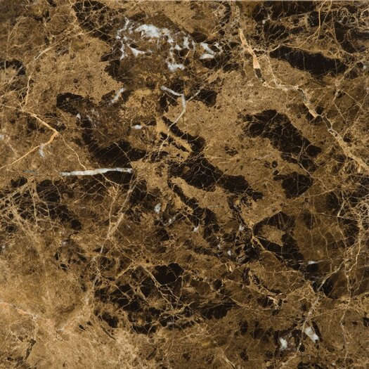 "Emser Tile Natural Stone 12"" x 12"" Marble Tile in Marrone Emperador Dark"