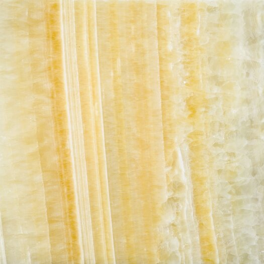 "Emser Tile Natural Stone 12"" x 12"" Onyx Tile in Golden Honey"