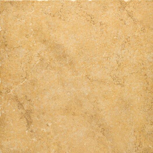 """Emser Tile Genoa 20"""" x 20"""" Glazed Porcelain Floor Tile in Luca"""