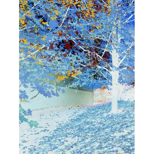 JORDAN CARLYLE Nature Falling Framed Graphic Art