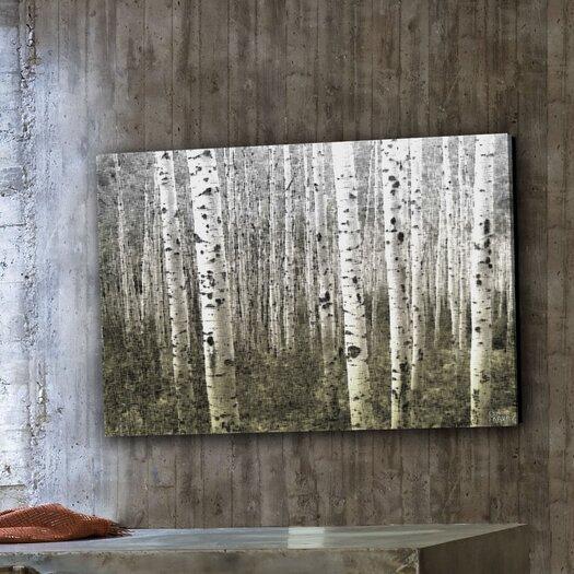 Parvez Taj Aspen Highlands Print Art on Premium Canvas