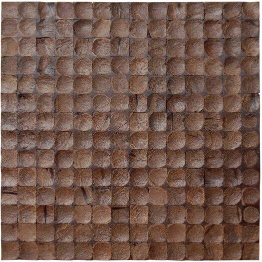 Cocomosaic Coconut Textured Mosaic in Espresso Bliss