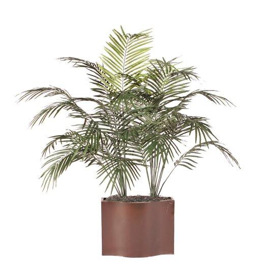 Vickerman Co. Deluxe Dwarf Palm Tree in Planter