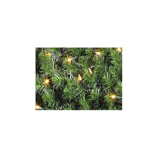 Vickerman Co. 9' Prelit Douglas Fir Garland with Clear Lights