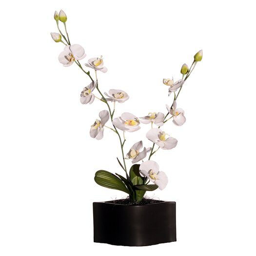 """Vickerman Co. Floral 29"""" Artificial Potted Cymbidium Orchids in White and Yellow"""