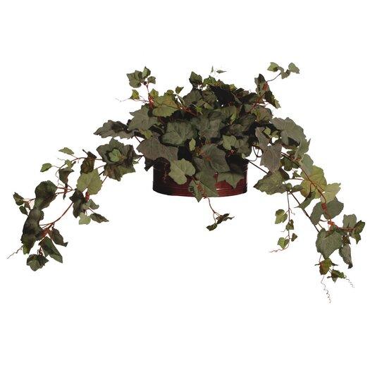 Vickerman Co. Floral Grape Ivy Desk Top Plant in Pot