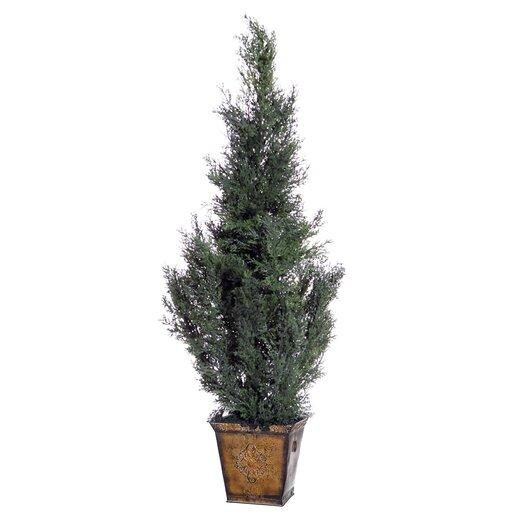 Vickerman Co. Cedar with Cones Cedar Tree in Planter