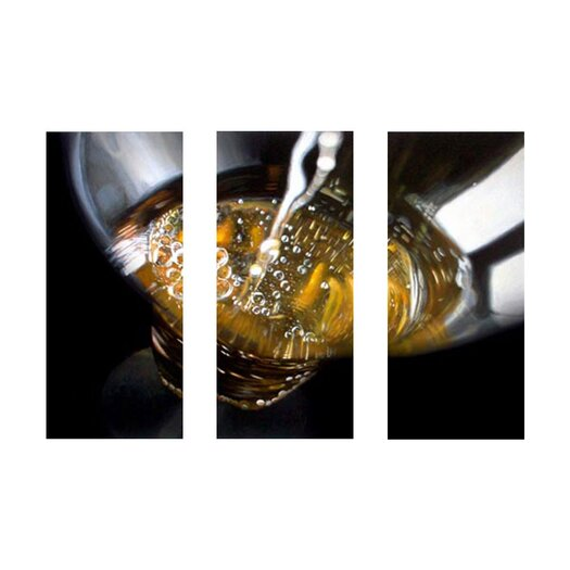 Trademark Global Champagne Pour by Roderick Stevens 3 Piece Photographic Print on Canvas Set