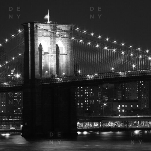 DENY Designs Leonidas Oxby Woven polyester Brooklyn Bridge 125 Shower Curtain