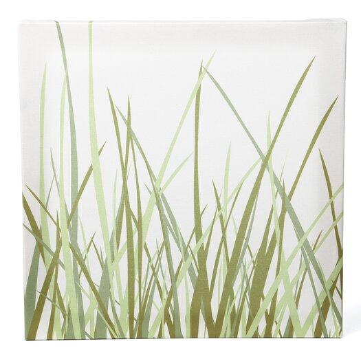 Inhabit Nourish Summer Grass Stretched Graphic Art on Canvas