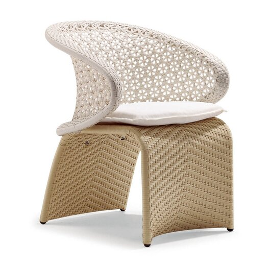 100 Essentials Exotica Dining Arm Chair with Cushion