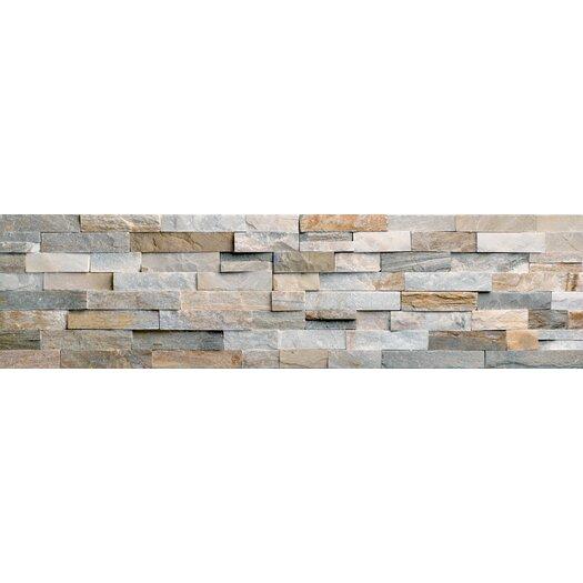 Faber Beach Ledge Stone Split Face Random Sized Wall Cladding Mosaic in Multi Color