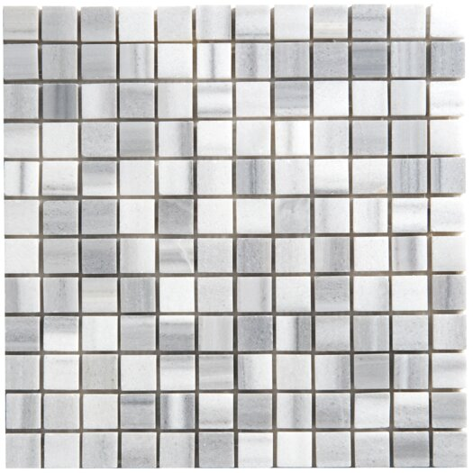 Faber Equator Marble Mosaic Polished Tile in White and Gray