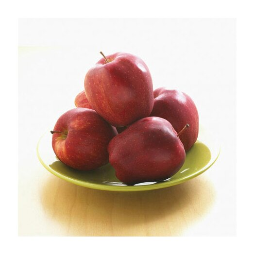 iCanvas Red Apples on a Plate Photographic