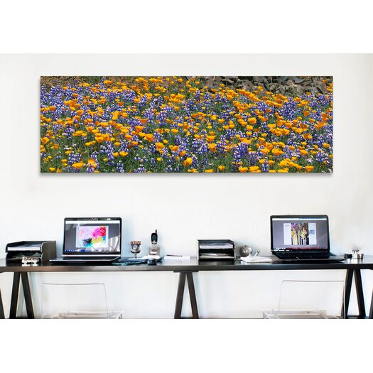 iCanvas Panoramic Table Mountain, California Photographic Print on Canvas