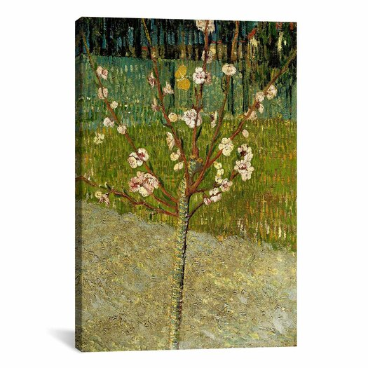 iCanvas 'Almond Tree in Blossom' by Vincent van Gogh Painting Print on Canvas