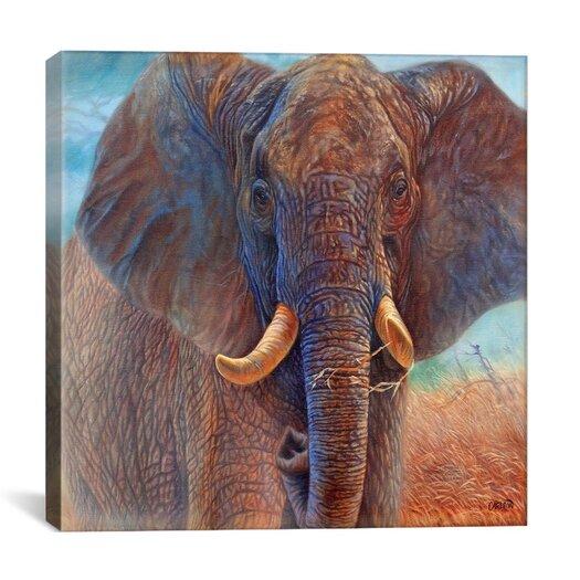 "iCanvas ""Giant Elephant"" Canvas Wall Art by Cory Carlson"