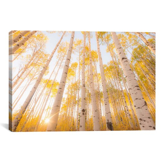 iCanvas 'Colorado' by Dan Ballard Photographic Print on Canvas