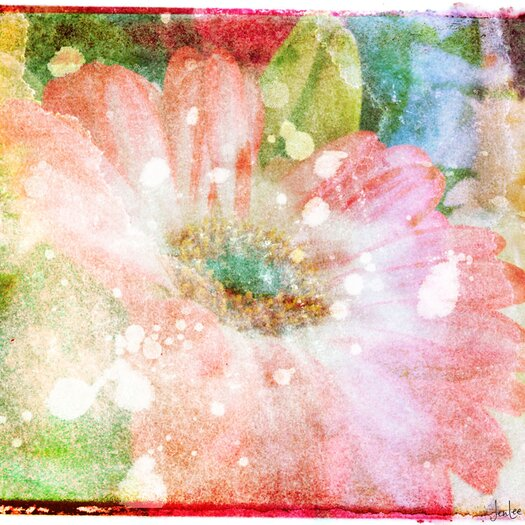 Jen Lee Art Flower Fairytale Graphic Art on Canvas