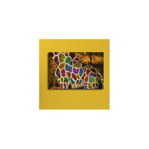 Maxwell Dickson Rainbow Giraffe Graphic Art on Canvas