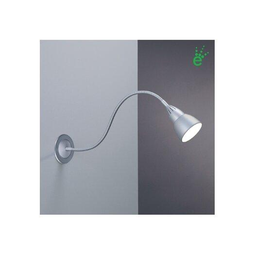 Bruck Lighting Ledra Display JBox Driver Picture Light Gooseneck Wall Lamp