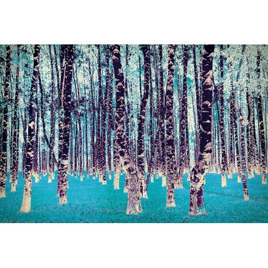 Salty & Sweet Lucid Birch Art on Canvas