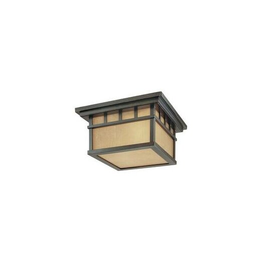 Dolan Designs Barton 2 Light Outdoor Flush Mount