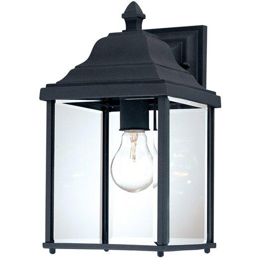 Dolan Designs Charleston 1 Light Outdoor Wall Lantern