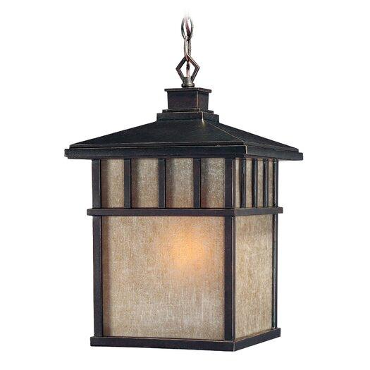 Dolan Designs Barton 1 Light Outdoor Lantern