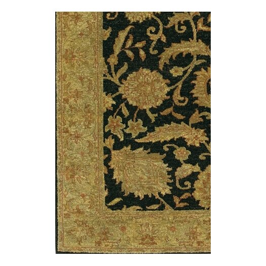 Chandra Rugs Carona Black / Brown Area Rug